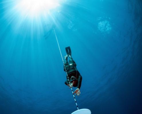 freediver venice