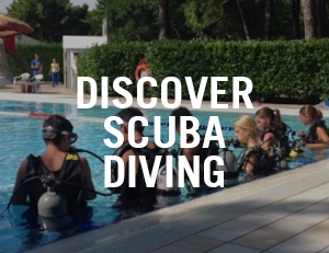 discover scuba diving venice