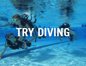 try diving venice